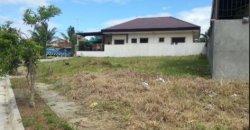 Lots for Sale in Priscilla Subdivision, Cabantian, Davao City